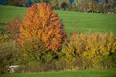 The beautiful scenery in the Voeren region